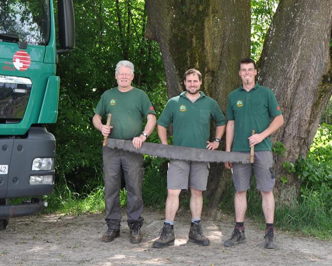 Team saegerei koller for Holzkaufmann